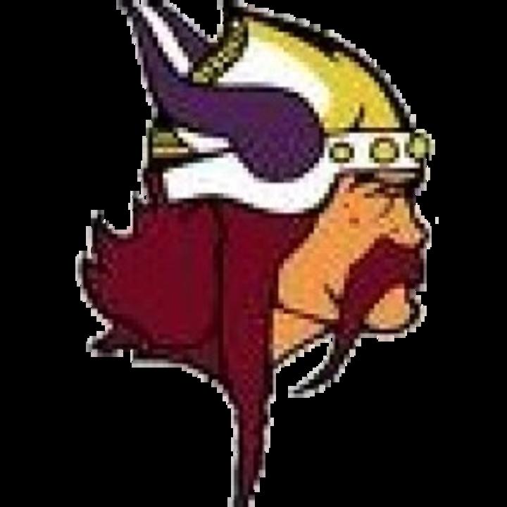 Denmark High School mascot