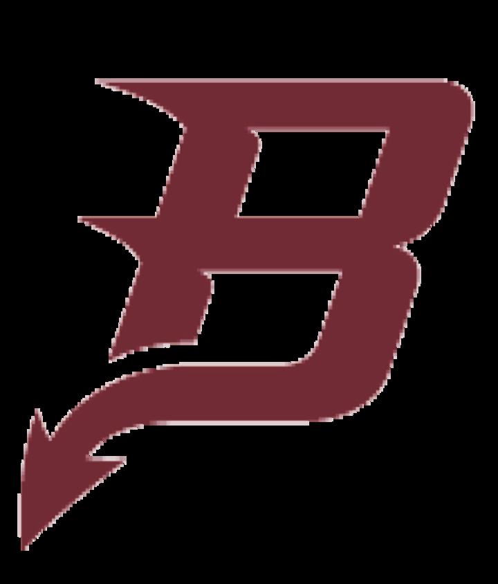 Bradford High School mascot