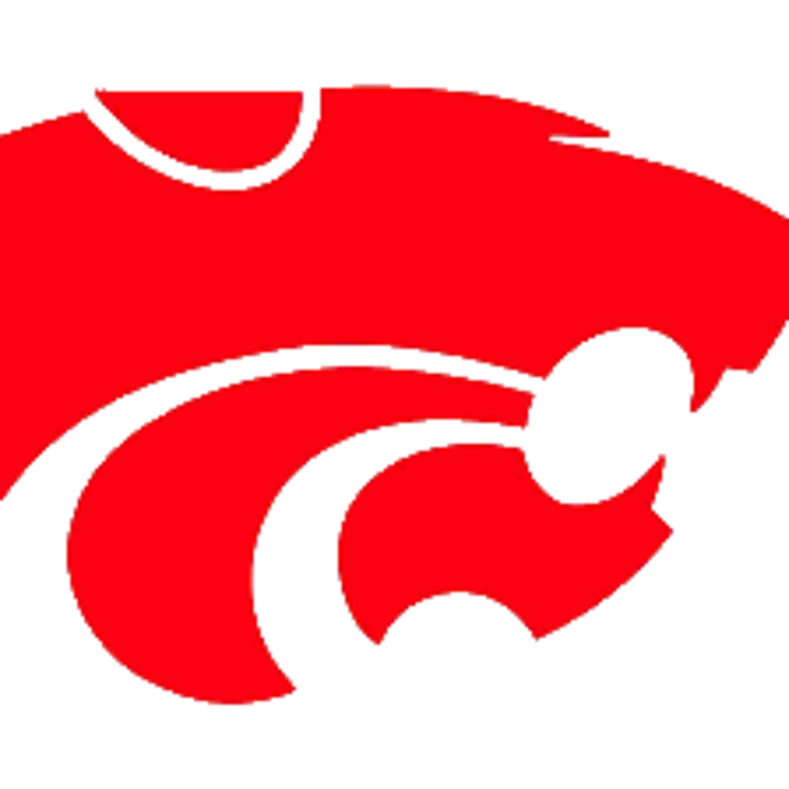 Carlisle High School mascot