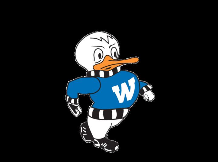 Watertown High School mascot