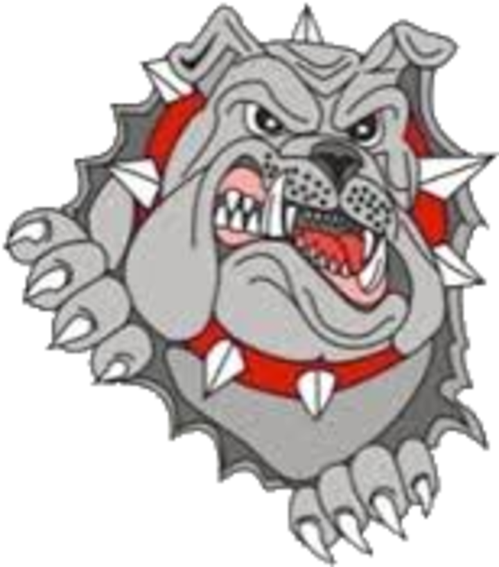 Orient-Macksburg High School mascot