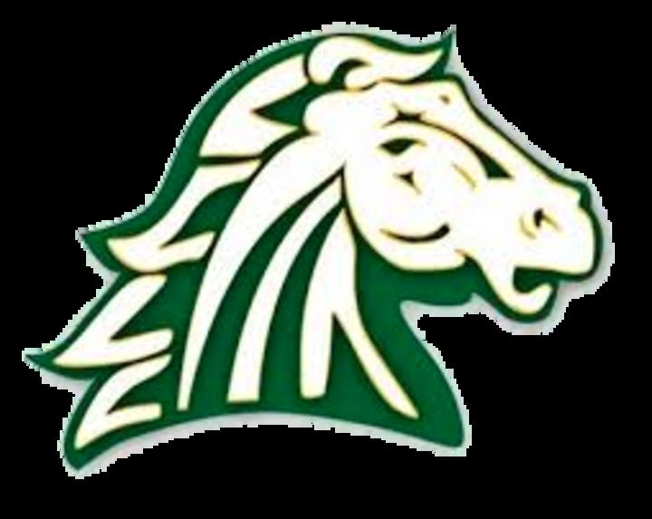 Hempstead High School mascot