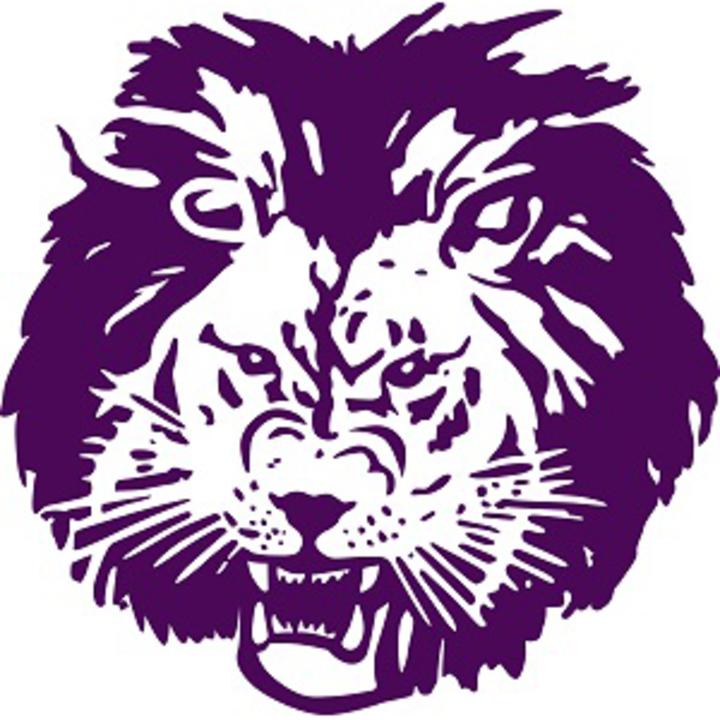Central Lyon High School mascot