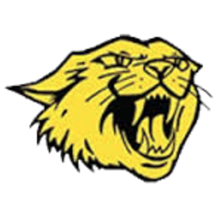 Maquoketa Valley High School mascot