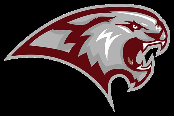 Warren County High School mascot