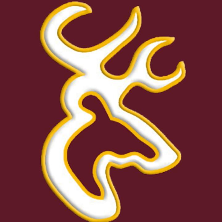 Deer Park High School mascot