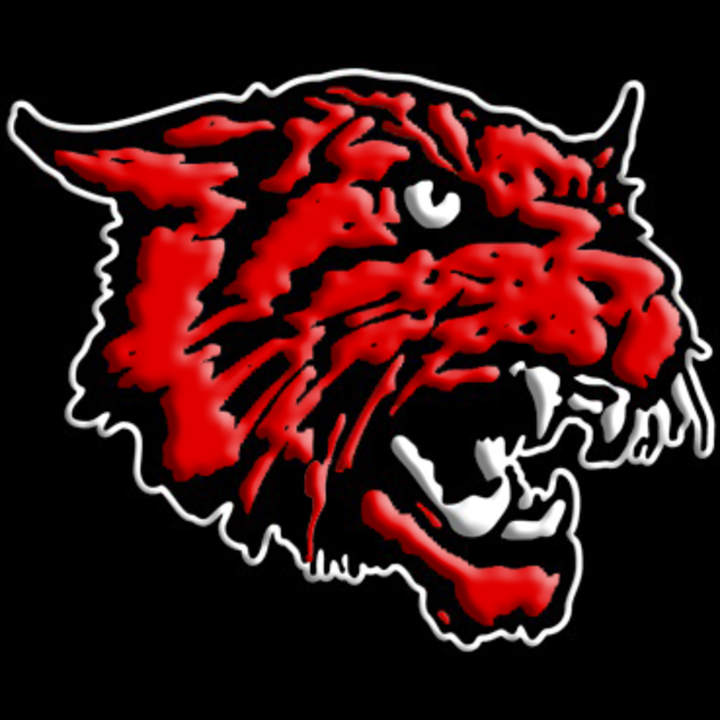 Kirbyville High School mascot