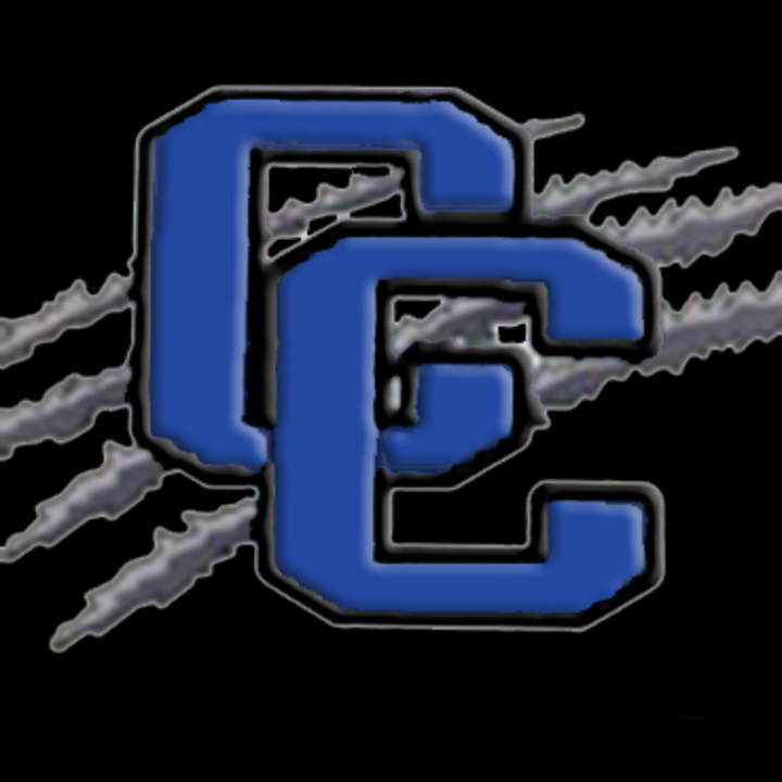 Community Christian High School mascot