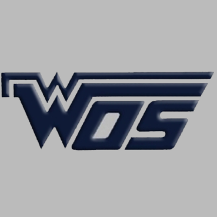 West Orange-Stark High School mascot