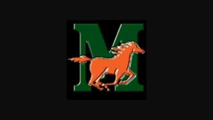 Mandarin High School mascot