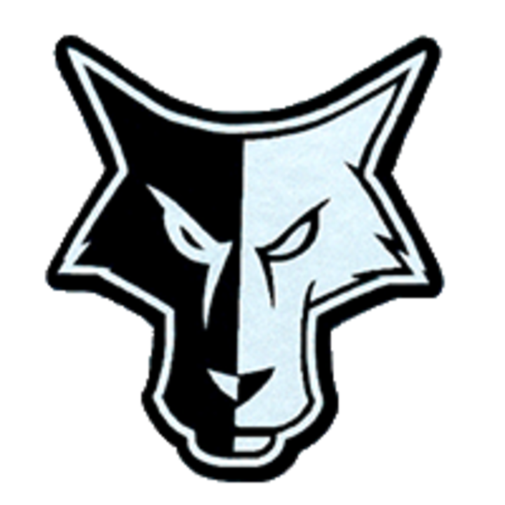 Waverly-South Shore High School mascot