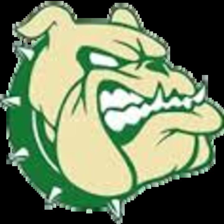 Provo High School mascot