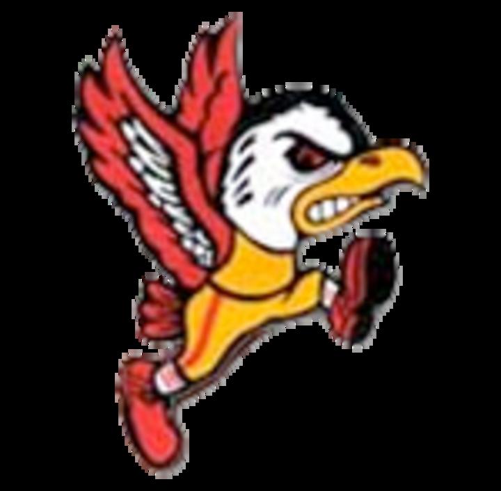 Benet Academy mascot