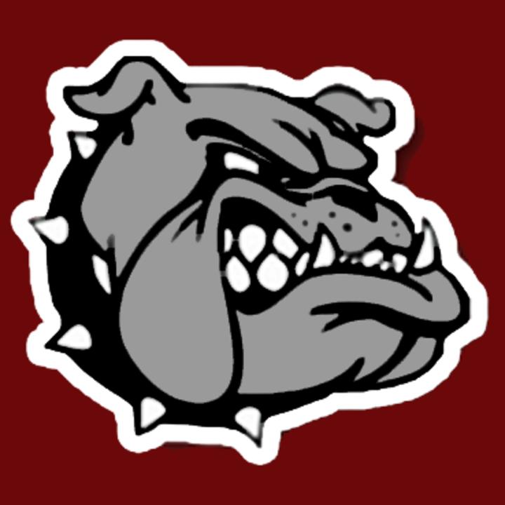 New Waverly High School mascot