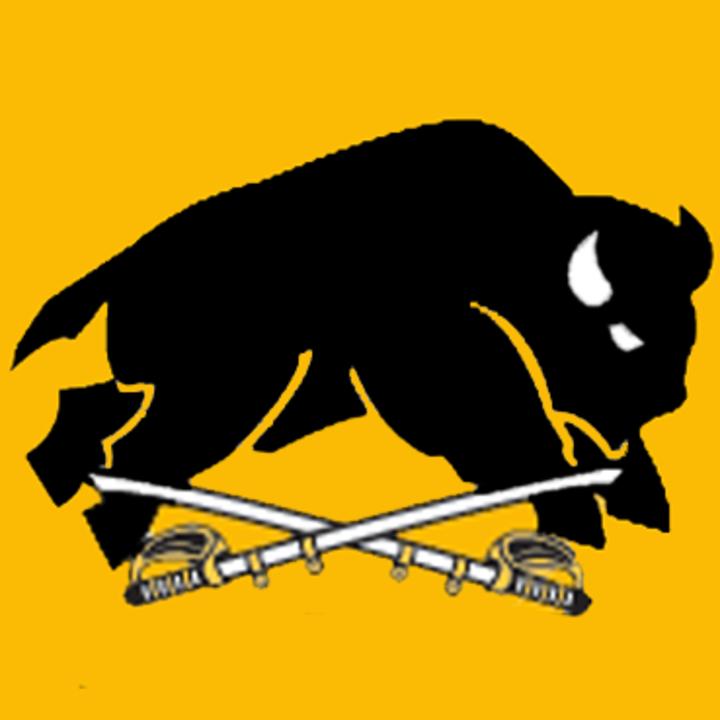 Marshall High School mascot