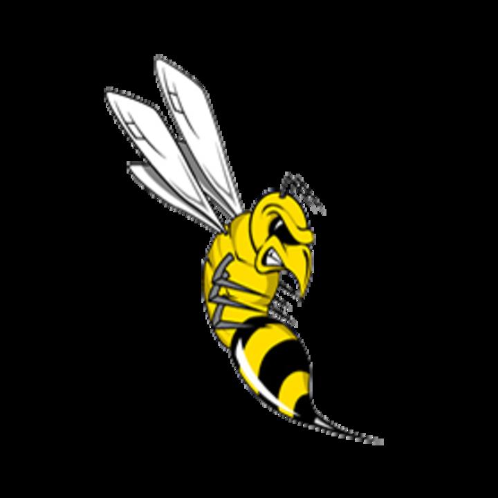 Tatnall mascot