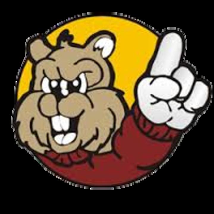 Chatfield High School mascot