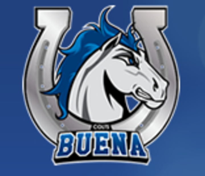 Buena High School mascot