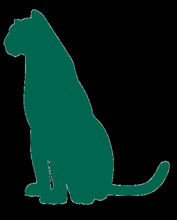 Comer College Prep mascot