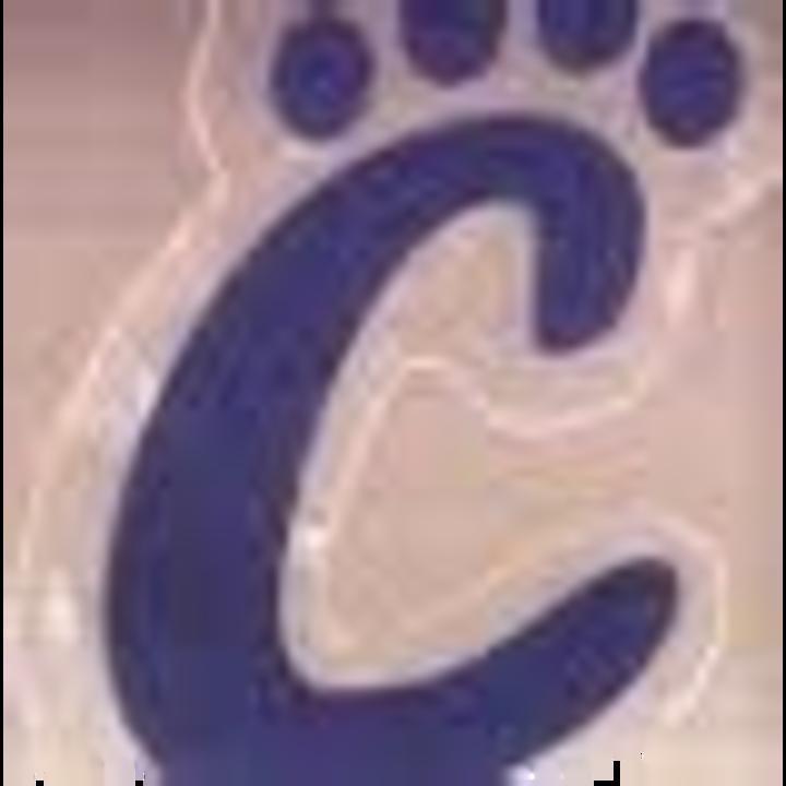 Pearl City/Eastland Co-Op mascot