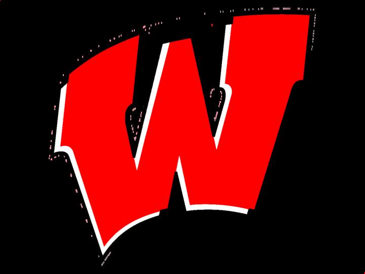 Wayne High School mascot