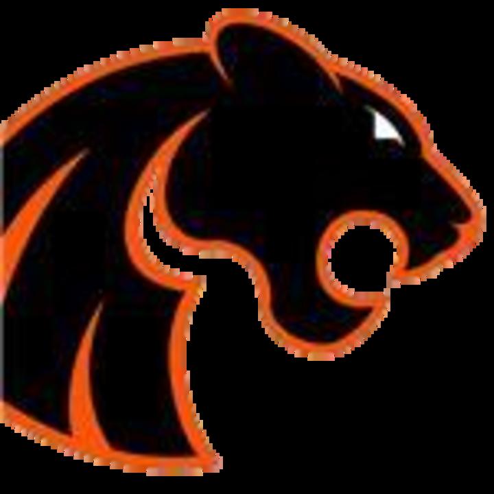 Gardner-South Wilmington High School mascot
