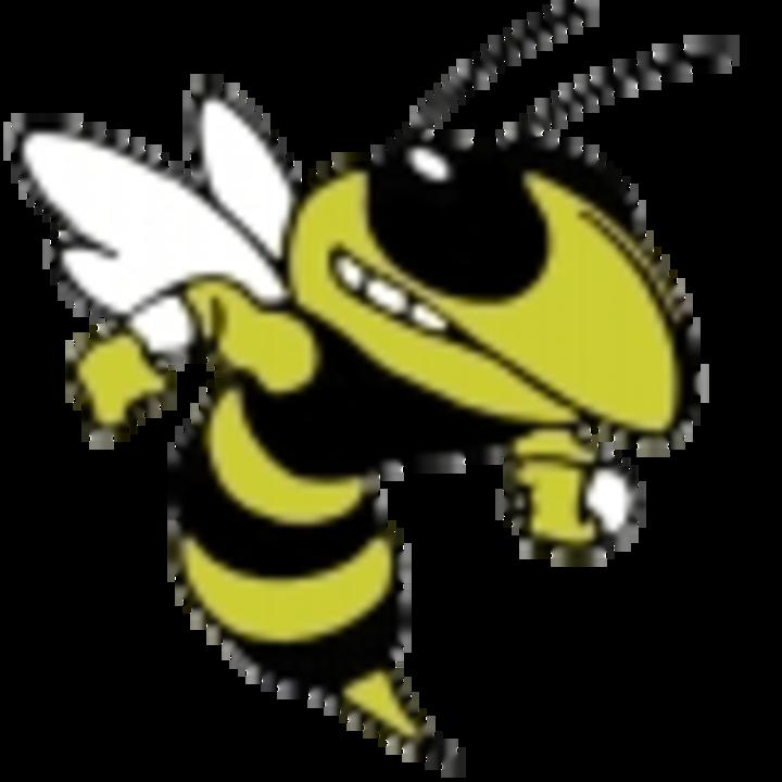 Gwynn Park High School mascot