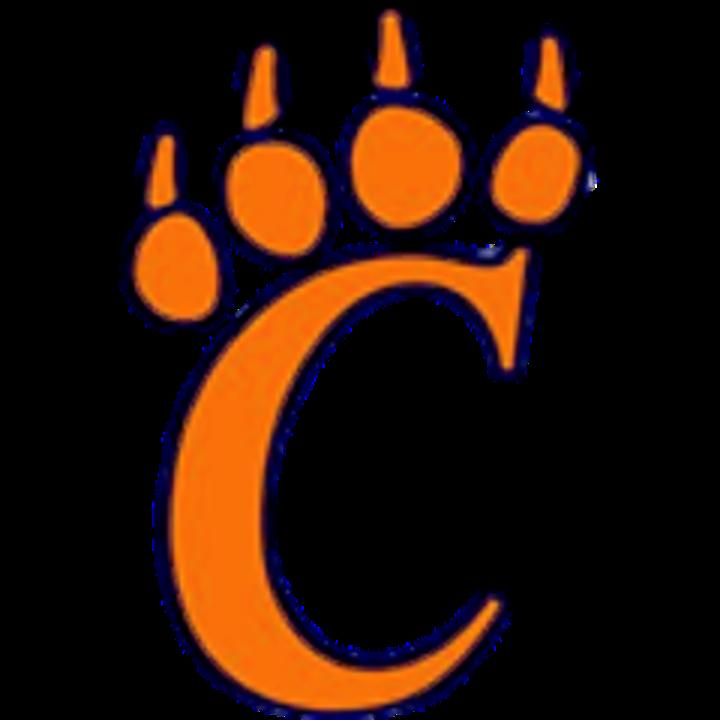 Carterville High School mascot
