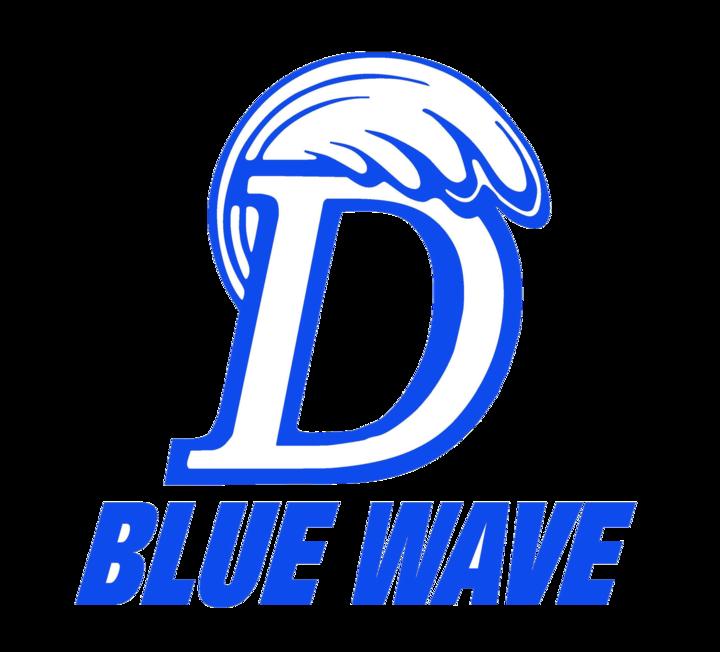 Darien High School mascot