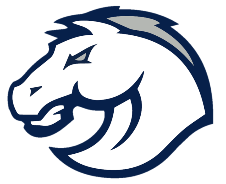 Blue Valley North High School mascot