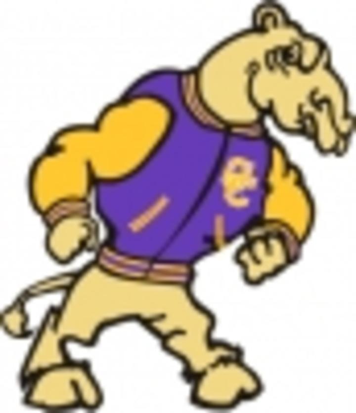 Campbell County High School mascot