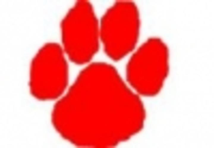 Beechwood High School mascot