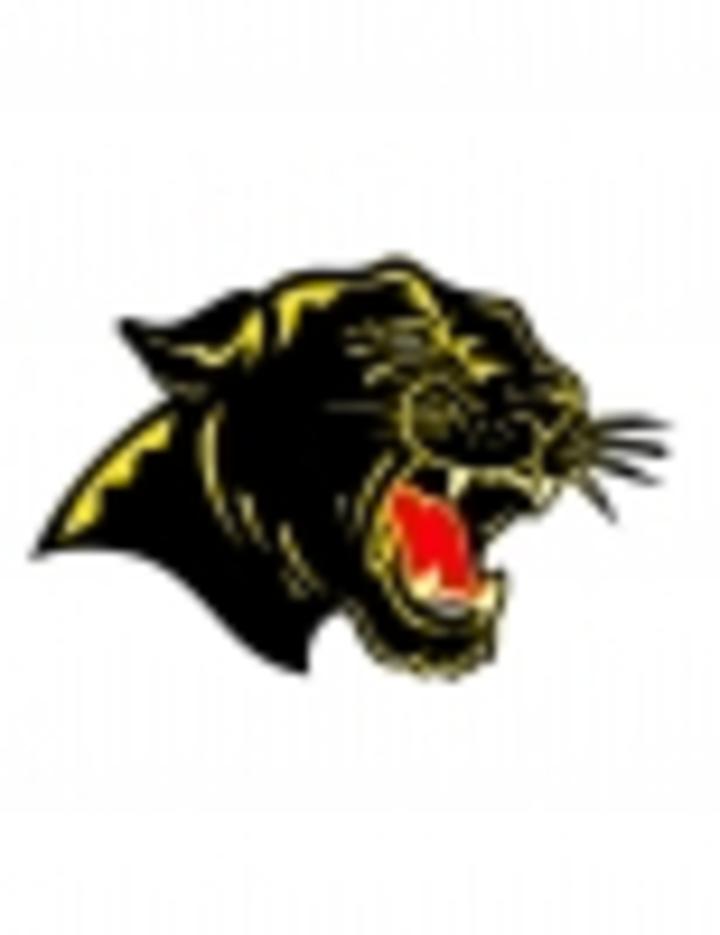 Carroll County High School mascot