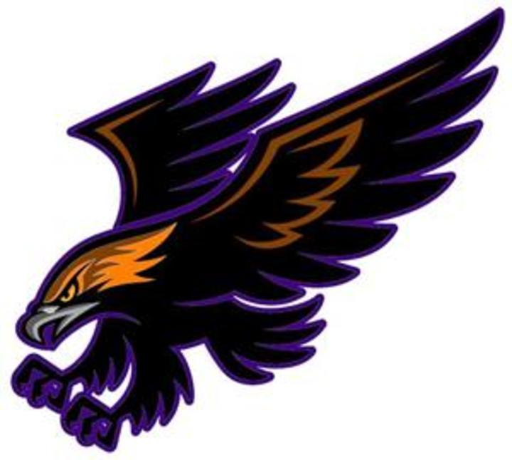 Bellbrook High School mascot