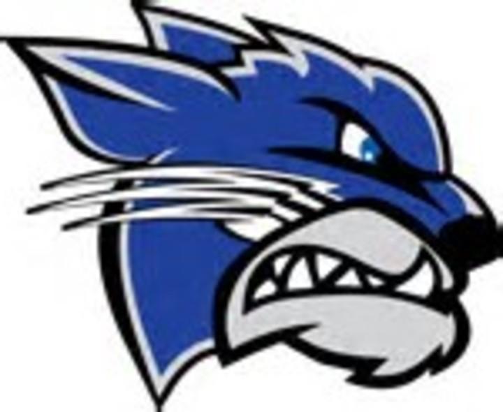 Walton-Verona High School mascot