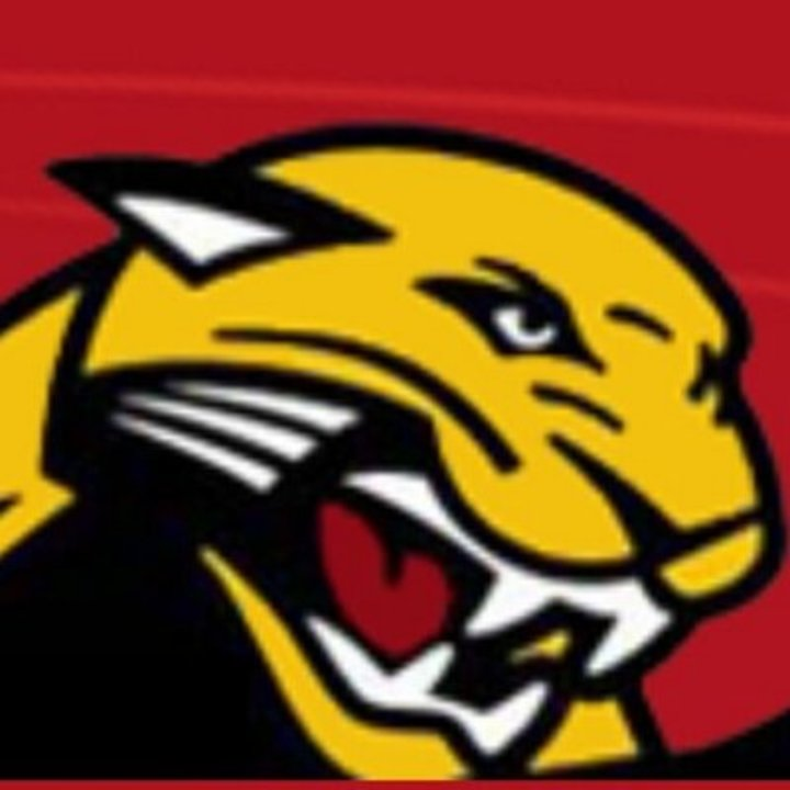 Coronado High School mascot