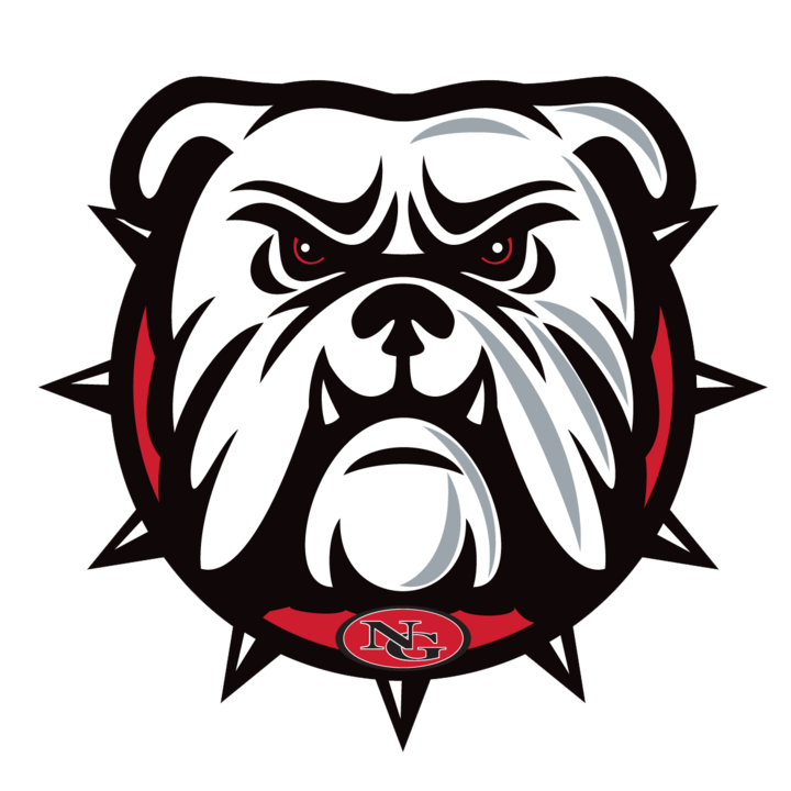 North Gwinnett High School mascot