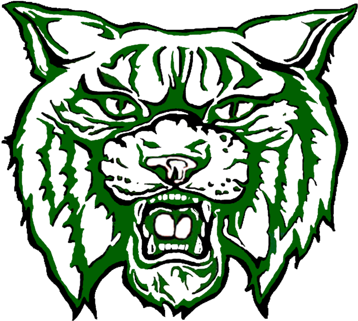 Paden City High School mascot