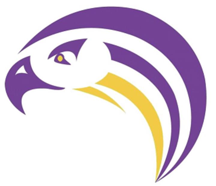 Aiken High School mascot