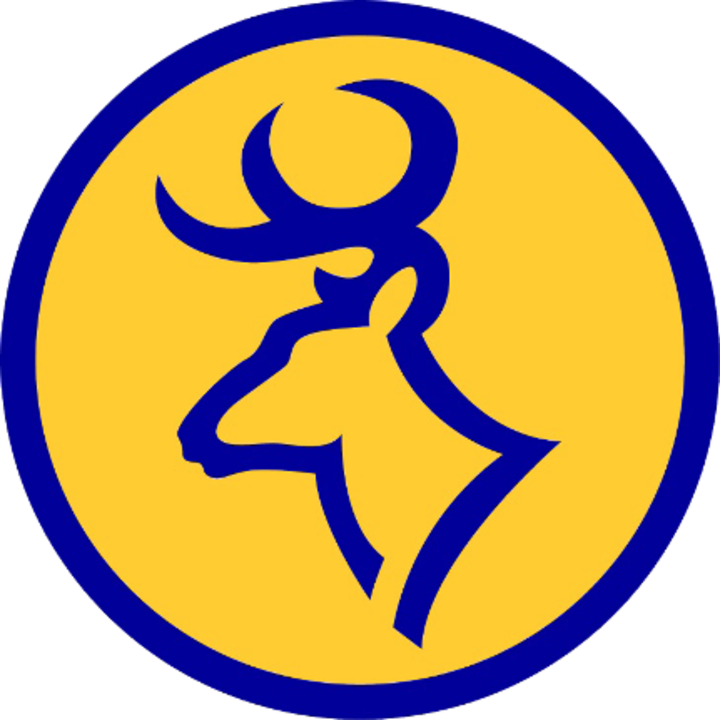 Roscommon High School mascot