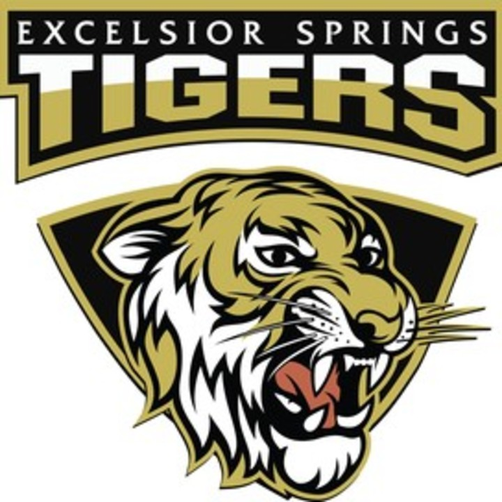 Excelsior Springs High School mascot