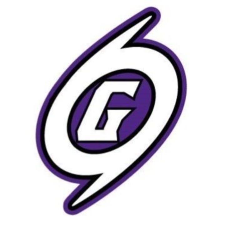 Gainesville High School mascot