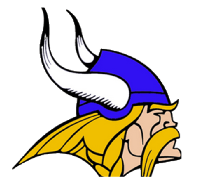 Lakeview High School mascot