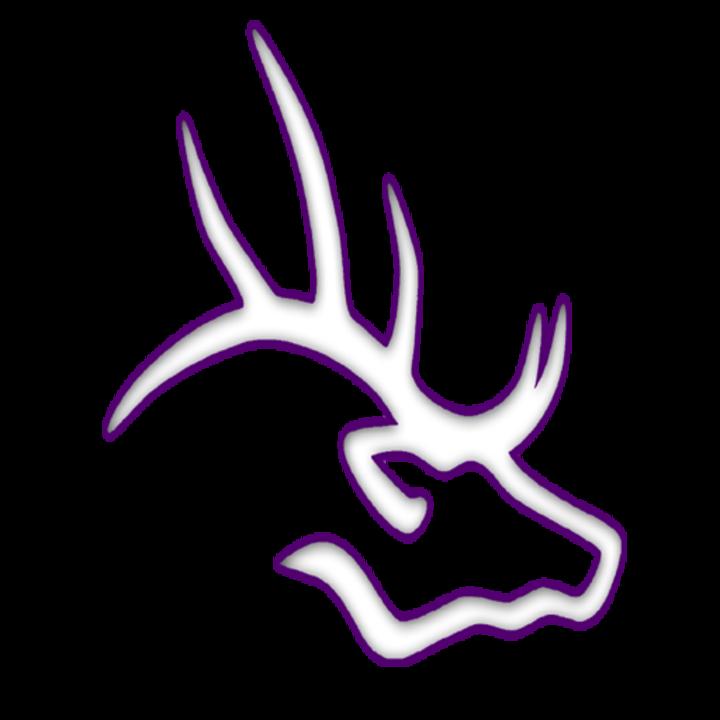 Elkins High School mascot