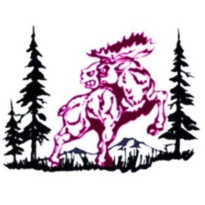 Alamosa High School mascot