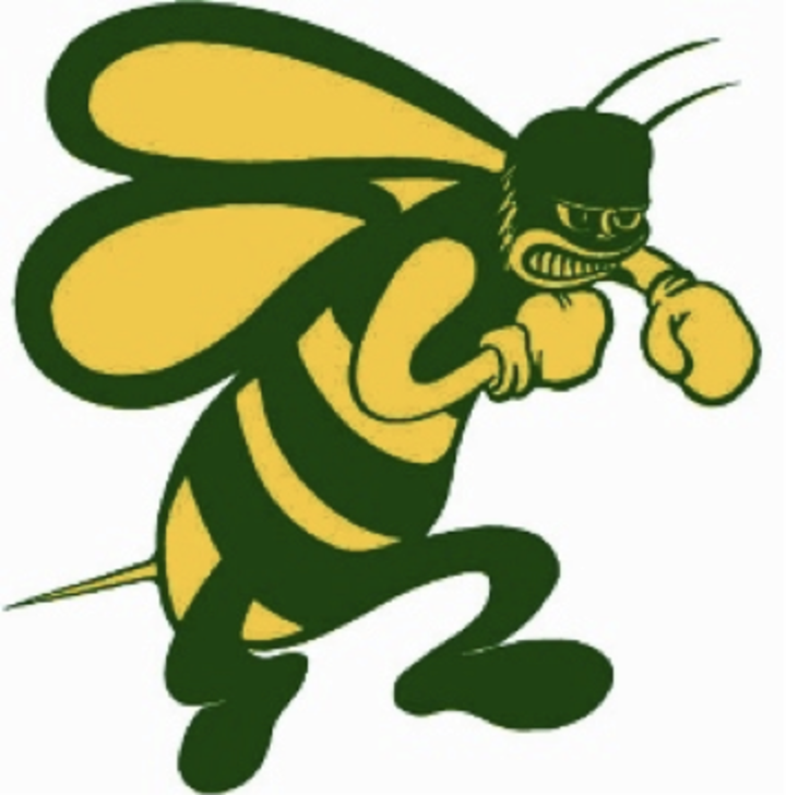 Pueblo County High School mascot