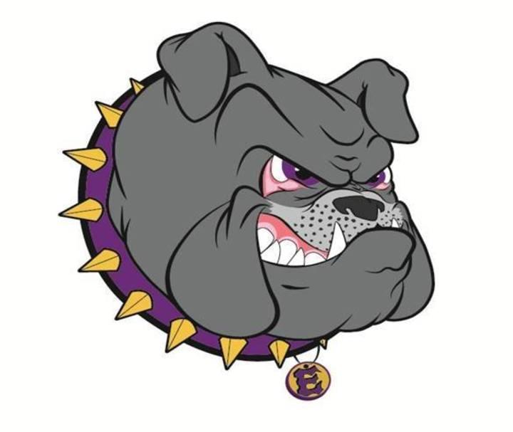 Elbert High School mascot