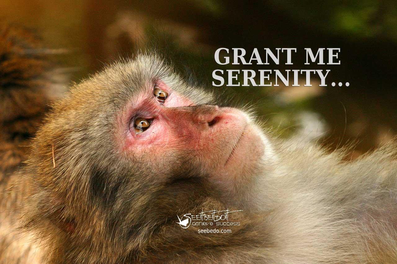 Grant me serenity