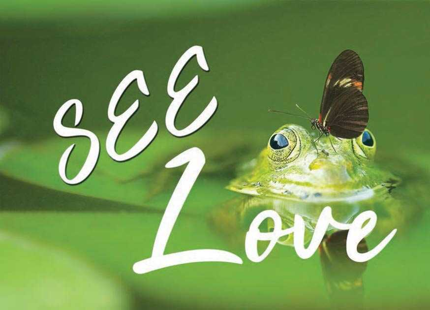 see love