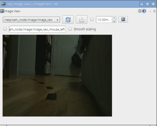 DIY Autonomous Vehicle RasPiCam Image Output